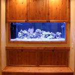 Customer Aquariums